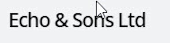 Echo and Sons Logistics